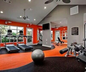 gym and sport image