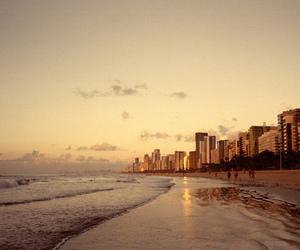 beach and city image