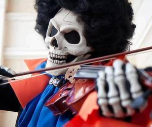 brook, one piece, and cosplay image