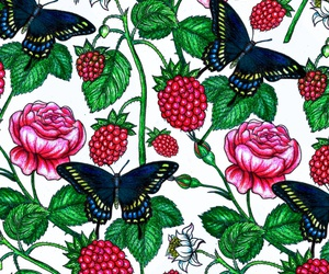 background, butterfly, and drawning image