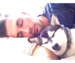 fox and james maslow image