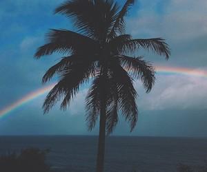 rainbow, beach, and palm trees image