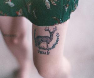 tattoo, vegan, and deer image