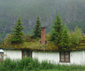 nature, norway, and house image