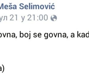 mesa selimovic image