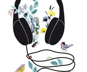 bird, music, and headphones image
