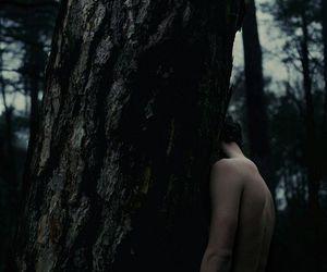 dark, fantasy, and woods image