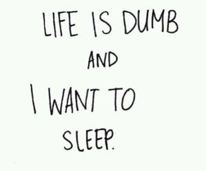 sleep, life, and quotes image