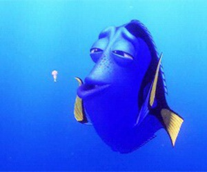 dory and finding nemo image