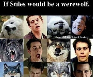 teen wolf, stiles, and werewolf image