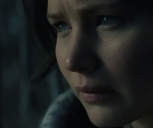 forest, woods, and katniss everdeen image