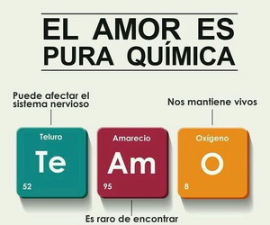amor, learn, and quimica image