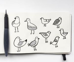 art, bird, and doodle image