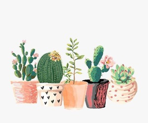 cactus, art, and plants image