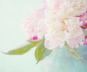 etsy, floral, and flower photography image