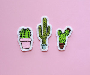 cactus, pink, and aesthetics image