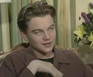 Leo, please, and leonardo dicaprio image