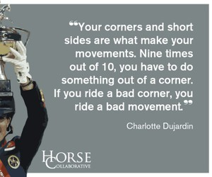 dressage, movement, and points image