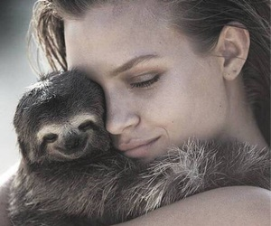 sloth, josephine skriver, and animal image