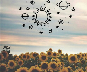 flowers, sky, and stars image