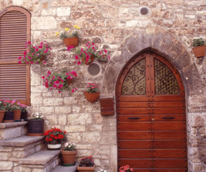 flowers, italy, and garden image