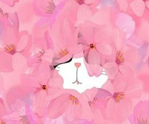 cat, flowers, and pink image