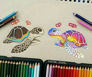 instagram, drawing, and turtle image