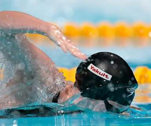 freestyle and swimming image