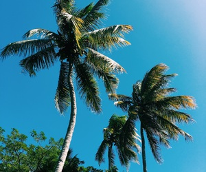 beach, chill, and fun image