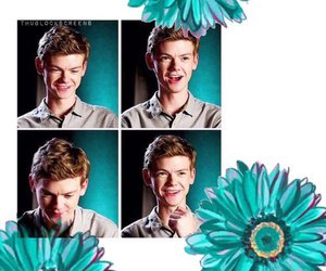 edit, newt, and wallpaper image