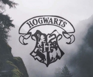 books, harry potter, and and image