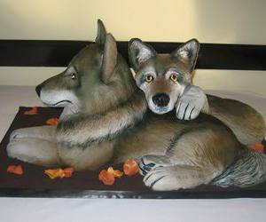 cakes and wolves image
