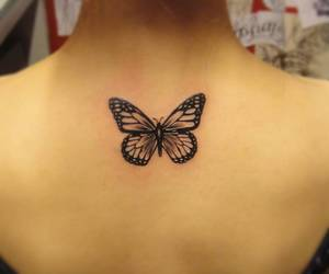 butterfly, delicado, and girl tattoo image
