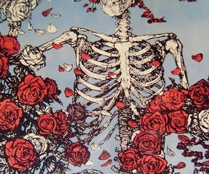 rose, skeleton, and skull image
