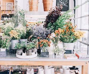 boho, lifestyle, and plants image
