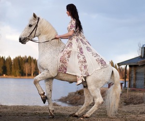 horse, dress, and beauty image