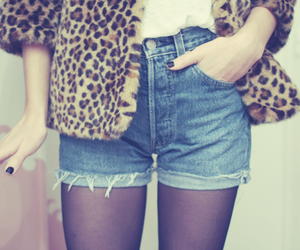 fashion, shorts, and leopard image