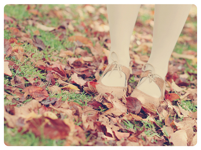 autumn, delicate, and melinwonderland image