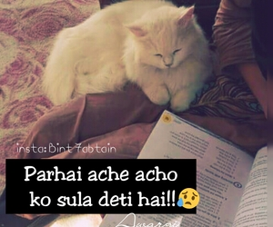 funny, urdu, and study image