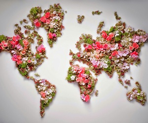 flowers, green, and world image