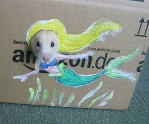 hamster, mermaid, and funny image