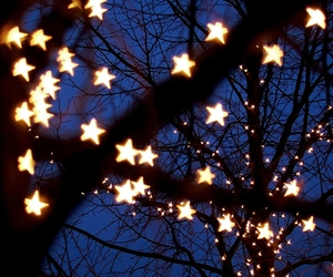 lights, stars, and trees image
