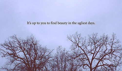 beauty, quote, and trees image