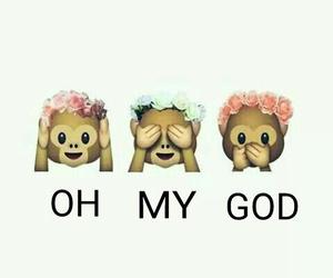 monkey, animal+, and OMG image