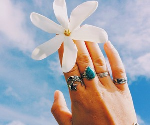 flowers, sky, and rings image