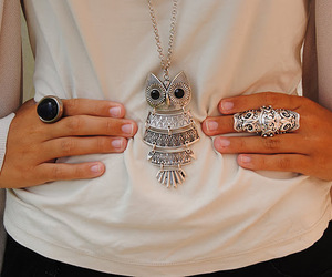 fashion, owl, and style image