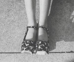 shoes, black and white, and miu miu image