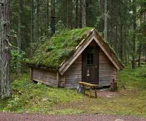 green, house, and woods image