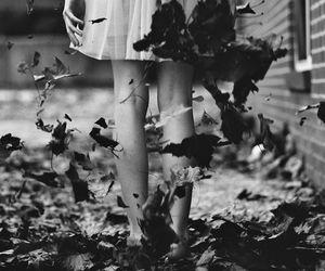 autumn, blanco y negro, and girl image