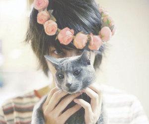 super junior, cat, and heechul image